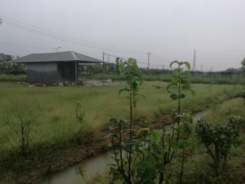 嘉兴海宁市30亩农场转包