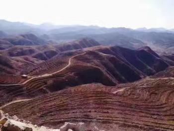 秦皇岛青龙满族自治县800亩其它草地合作