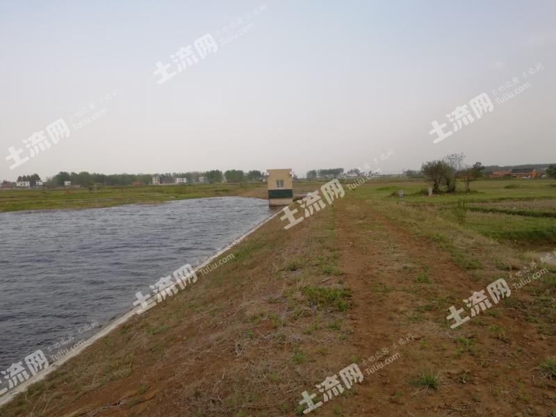 滁州定遠縣120畝坑塘出租