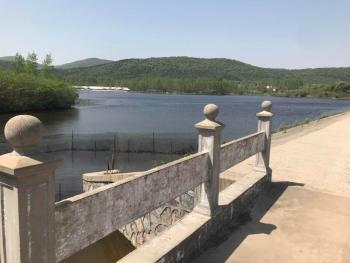 150亩依山傍水风水宝地(有林权证),长达50年使用权