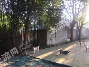 南京高淳區 16.36畝 農場 轉讓