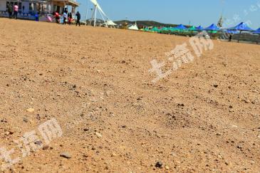 新乡凤泉区 100亩 沙地 转让
