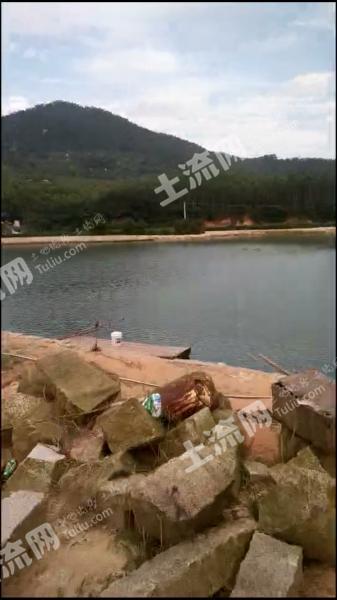 漳州漳浦縣 19畝 坑塘 轉讓