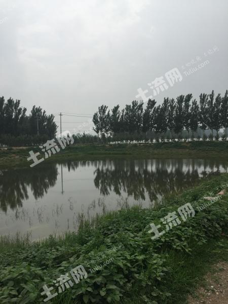 北京順義區 10畝 坑塘 出租