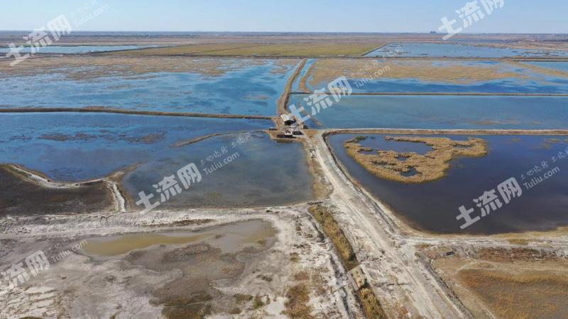 安達市(距大慶市10公里)  3000畝 魚池 出租