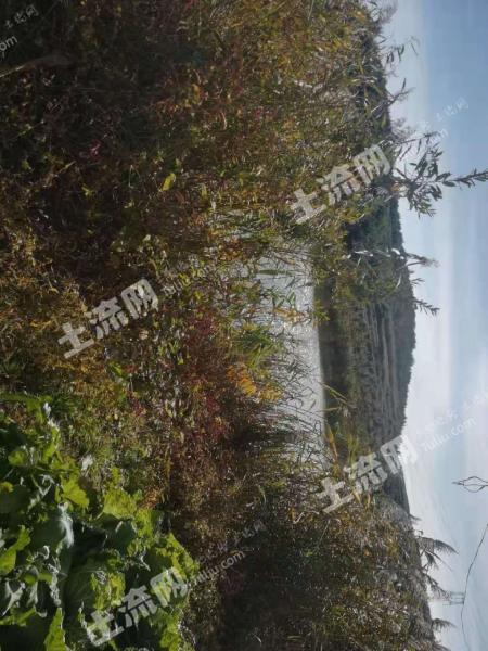 大連普蘭店區10畝坑塘轉讓