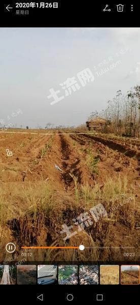 东南亚柬埔寨150000亩出租(1)