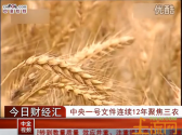 中央一號文件連續12年聚焦三農 農業股有望受益【中金視聽】