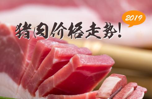 2019豬肉價格走勢!