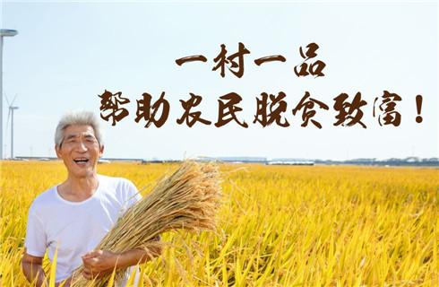 一村一品,帮助农民脱贫致富!